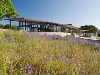 Casas de estilo  de Feldman Architecture, Moderno