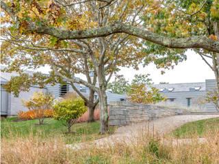 Ein Juwel in Herbstfärbung Moderner Garten von Ecologic City Garden - Paul Marie Creation Modern