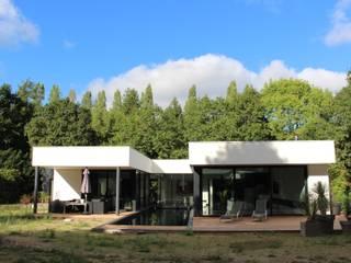 Black and White: Jardin de style  par AM architecture
