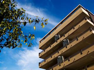 Houses by Vidal Molina Arquitectos, Modern