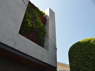Muro Verde Fuentes del Pedregal de Regenera Mx - Fábrica Ecológica Moderno