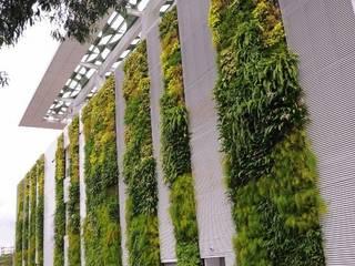 Jardines de estilo moderno de TERRA Arquitectura + Paisajismo Moderno