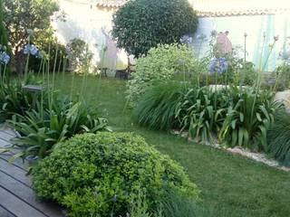 100 m2 de verdure dans Montpellier par Les Jardins de Marion