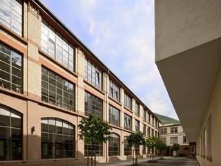 根據 Hauser - Architektur 簡約風