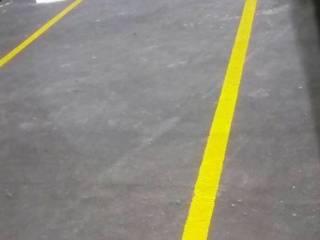 Estadio de Fútbol los Alebrijes Casas clásicas de Printemps Clásico