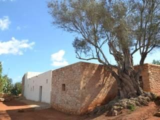 Can Bassó Casas de estilo rústico de AMOMA ARQUITECTURA Rústico