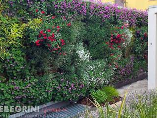 Giardino verticale urbano:  in stile  di Pellegrini Giardini