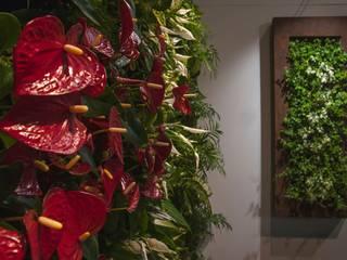 Grüne Wand: modern  von Vertical Green Design ,Modern