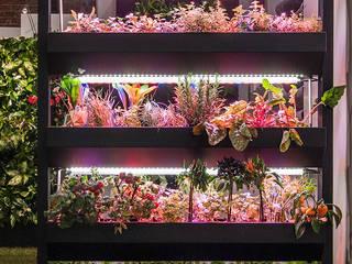 Gemüsegarten Vertical Green Design Raumbegrünung