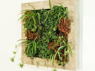 Hängende Gärten Vertical Green Design Raumbegrünung
