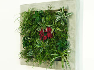 Hängende Gärten: modern  von Vertical Green Design ,Modern