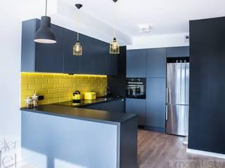 Mieszkanie z trzema kotami: styl , w kategorii Kuchnia zaprojektowany przez Limonki Studio Wojciech Siudowski