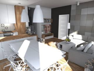 Limonki Studio Wojciech Siudowski
