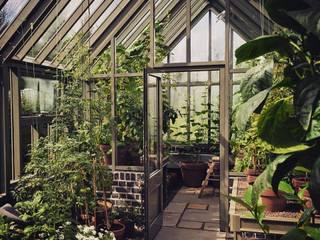 Придумали, спроектировали и построили теплицу в английском стиле. : Сады в . Автор – СпецПаркДизайн_