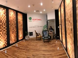 Maderal Modern walls & floors Wood