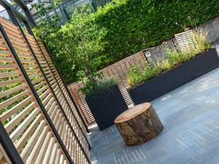 Terrazzo a Torino Balcone, Veranda & Terrazza in stile moderno di Ginkgo Giardini Moderno