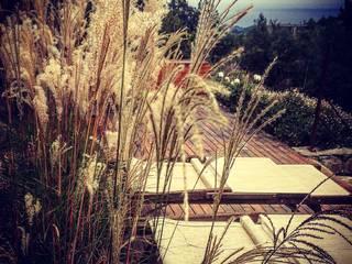Mare Monti: Giardino in stile  di Studio S.O.A.P.