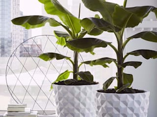 Heraldry Large White Modern Indoor Planter:   by Artificial Green