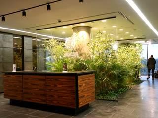 Внутренее озеленение:  в . Автор – Укр Ландшафт Парк