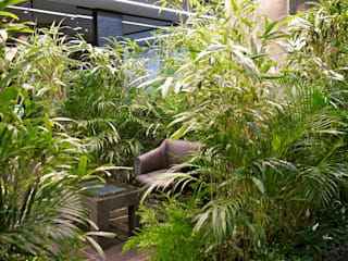 Внутреннее озеленение офиса:  в . Автор – Укр Ландшафт Парк