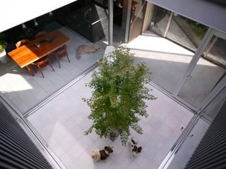 中庭: 藤井伸介建築設計室が手掛けた庭です。