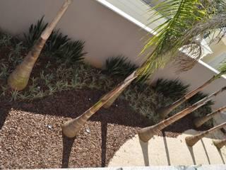 Paisagismo residencial na Granja Viana Jardins modernos por Kelly Abramo Paisagismo Moderno