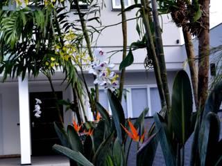 Jardins modernos por TM&LH_ arq.arte - Tatiana Moraes e Lucia Helena Moderno