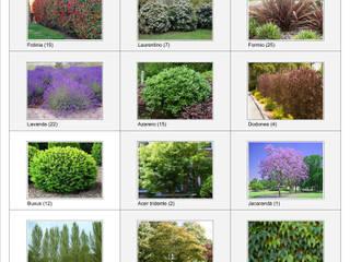 Anteproyecto Jardín Geradi: Jardines de estilo  por Dhena CONSTRUCCION DE JARDINES,Moderno