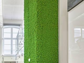 Nachher: Wandvorsprung in Altbau-Büro-Loft mit hohen Decken, begrünt mit NATURADOR® Islandmoos:  Bürogebäude von NATURADOR® Vertikale Gärten
