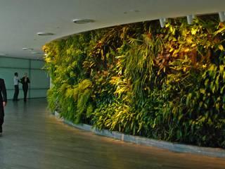 vertical garden Bangunan Kantor Modern Oleh NISCALA GARDEN | Tukang Taman Surabaya Modern