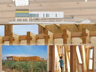 EVOA - ESPAÇO DE VISITAÇÃO E OBSERVAÇÃO DE AVES: Locais de eventos  por Maisr Arquitectura e Reabilitação, lda.,Campestre