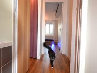 Rénovation et aménagement d'un appartement de 65 m² Couloir, entrée, escaliers modernes par Agence VOLUMES & SURFACES Moderne