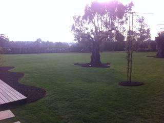 Jardines de estilo moderno de Marcos sousa Moderno