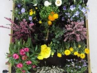 Mediterranean style garden by Biocity Engineering Srl Mediterranean