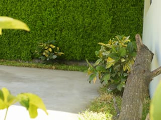 paisajismo . muros verdes jardines. Jardines modernos de 3HOUS Moderno