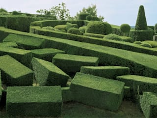 Jardins de Formas Ecossistemas