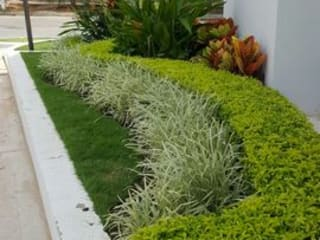 SALA DE VENTAS - MADEIRA APTOS. - BARRANQUILLA - COLOMBIA BRASSICA SOLUCIONES PAISAJISTICAS S.A.S. Jardines de estilo tropical