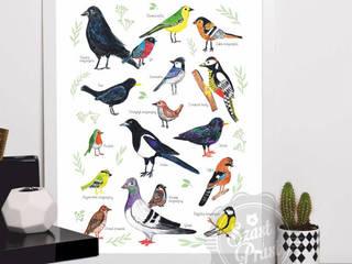 Ptaki od Szast i Prast Nowoczesny