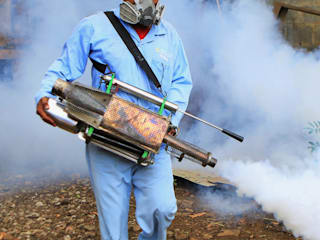 Pest Prevention and Elimination:   by Pest Control Durban