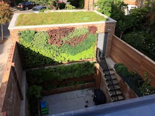 Dark Basement garden and living wall من Jane Harries Garden Designs