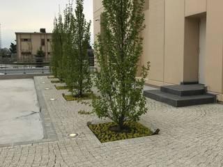 Office buildings by konseptDE Peyzaj Fidancılık Tic. Ltd. Şti.