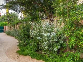 Jardines de estilo mediterráneo de Studio 4e Mediterráneo