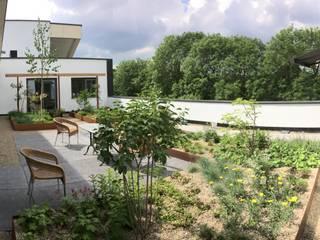 Vườn phong cách hiện đại bởi JWG Architecten Hiện đại