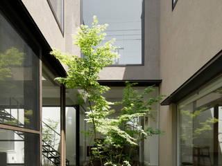 中庭 モダンな庭 の atelier137 ARCHITECTURAL DESIGN OFFICE モダン