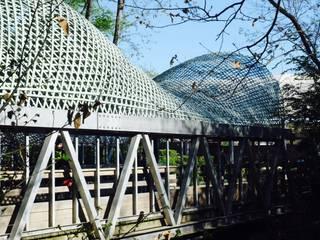 Déambulons Museum Tropis Bambu