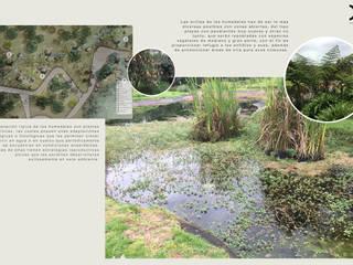 BIOREFUGIO COLEGIO LOS NOGALES Jardines de estilo rural de concepto verde SAS Rural