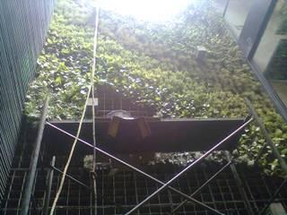 Jardines Verticales Jardines modernos de Habitecmx Moderno
