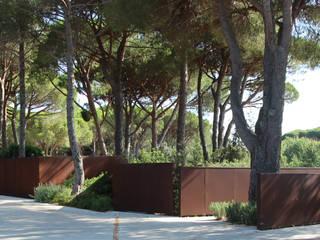 vista 1: Giardino in stile in stile Mediterraneo di      Massimo Viti Architetto                                   studio Architectural Make-Up+