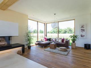 Living room by KitzlingerHaus GmbH & Co. KG, Modern Engineered Wood Transparent