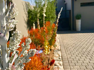 Modern garden by Acton Gardens Modern